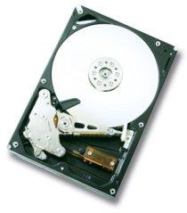 Hitachi 1-Terabyte Deskstar 7K1000