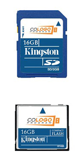 Kingston Flash Cards